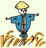 くにうみの島淡路島から新鮮な野菜をお届け!三和農場
