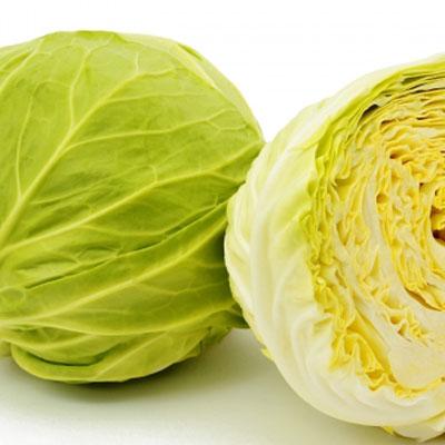 三和農場のくにうみ野菜「キャベツ」