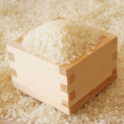 三和農場のくにうみ野菜「米」